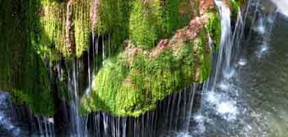 Bigar vízesés – Románia legszebb zuhataga