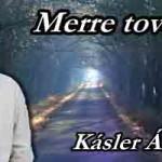Kásler Árpád-Merre tovább?