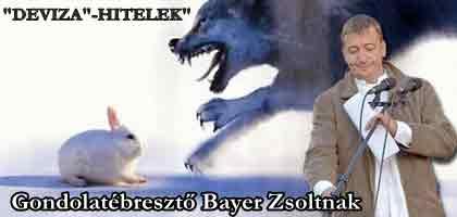 """""""DEVIZA""""-""""HITEL""""- GONDOLATÉBRESZTŐ BAYER ZSOLTNAK"""