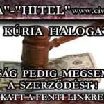 A KÚRIA HALOGAT, A BÍRÓSÁG PEDIG MEGSEMMISÍTI A HITELSZERZŐDÉST