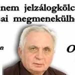 DR LÉHMANN - A NEM JELZÁLOGKÖLCSÖN ADÓSAI MEGMENEKÜLHETNEK! OSZD MEG!
