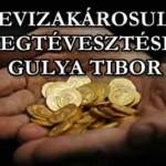 A DEVIZAKÁROSULTAK MEGTÉVESZTÉSE-GULYA TIBOR.