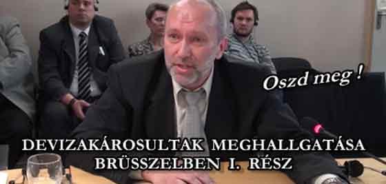 DEVIZAKÁROSULTAK MEGHALLGATÁSA BRÜSSZELBEN I. RÉSZ.