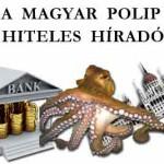 A MAGYAR POLIP – HITELES HIRADO