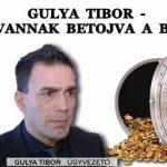 GULYA TIBOR - MIÉRT VANNAK BETOJVA A BANKOK?