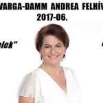 DR. VARGA-DAMM ANDREA FELHÍVÁSA 2017-06.