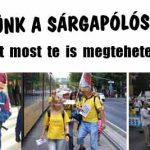 SEGÍTSÜNK A SÁRGAPÓLÓSOKNAK!