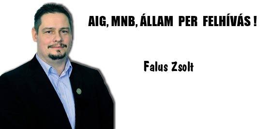 FALUS ZSOLT - AIG,MNB,ÁLLAM PER FELHÍVÁS!