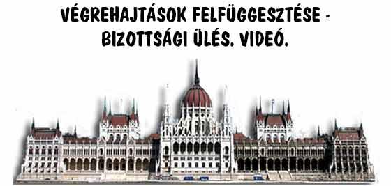 VÉGREHAJTÁSOK FELFÜGGESZTÉSE - BIZOTTSÁGI ÜLÉS. VIDEÓ.
