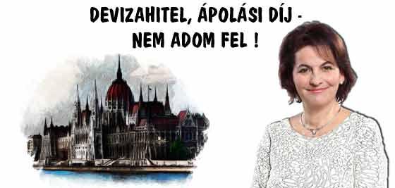 DEVIZAHITEL, ÁPOLÁSI DÍJ - NEM ADOM FEL!
