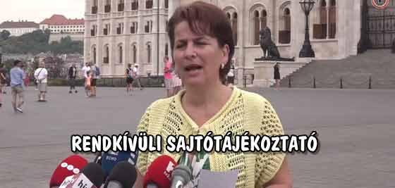 VARGA-DAMM ANDREA RENDKÍVÜLI SAJTÓTÁJÉKOZTATÓJA.
