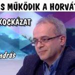ÁRFOLYAMKOCKÁZAT - NÁLUNK IS MŰKÖDIK A HORVÁT MODELL.