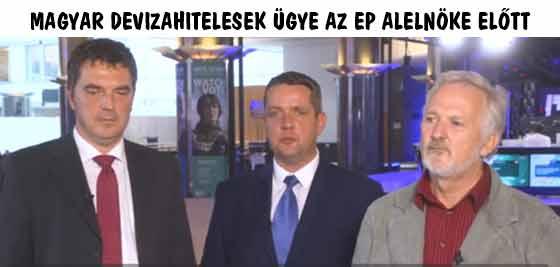 MAGYAR DEVIZAHITELESEK ÜGYE AZ EP ALELNÖKE ELŐTT.
