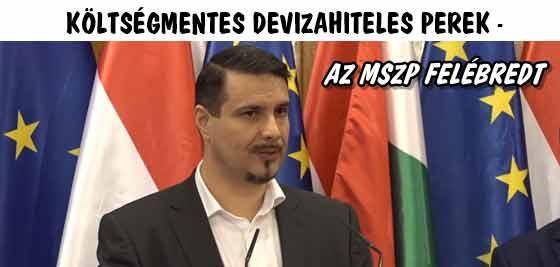 KÖLTSÉGMENTES DEVIZAHITELES PEREK-AZ MSZP FELÉBREDT.