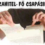 DEVIZAHITEL- FŐ CSAPÁSIRÁNY.