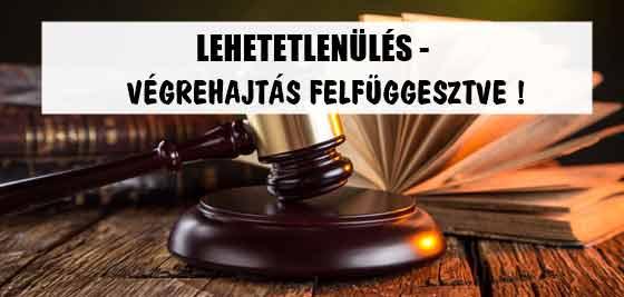 LEHETETLENÜLÉS-VÉGREHAJTÁS FELFÜGGESZTVE!