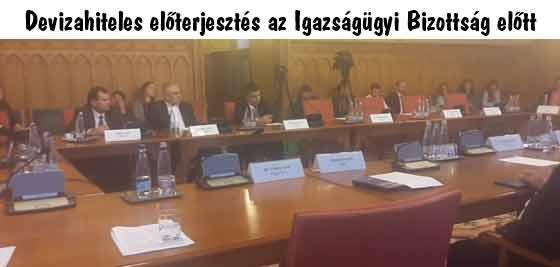 Devizahiteles előterjesztés az Igazságügyi Bizottság előtt.
