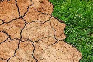 Alvó óriásokat ébreszt fel az éghajlatváltozás