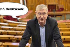 Gyurcsány Ferenc, Nemzeti Civil Kontroll, devizahitel, Deviza-katasztrófa. Válasz érkezett a DK-tól