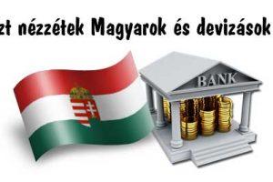 Nemzeti Civil Kontroll, devizahitel, Ezt nézzétek Magyarok és devizások!